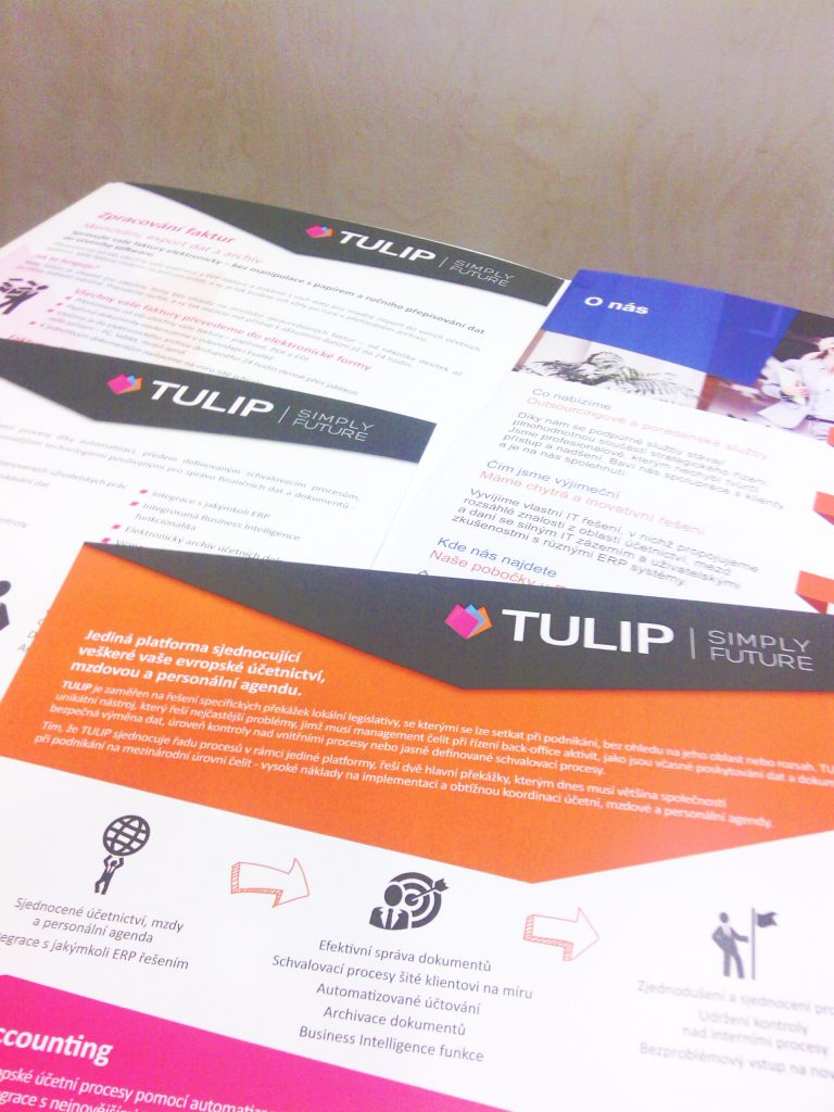 TULIP sponsor at eAccounting conference