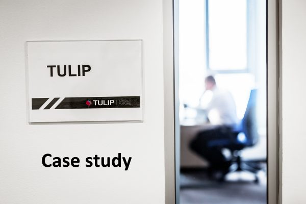 tulip cooperation with IT corporation